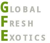 GFE_Logo